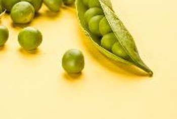 Pea pods are rich in vitamin C.
