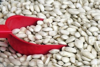 Great northern beans are rich in dietary fiber.
