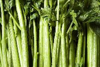 One stalk of celery contains about 10 calories.