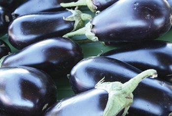 Eggplant is the main ingredient in baba ganoush.