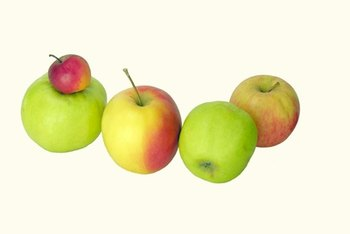 Apples aren't likely to cause weight gain.