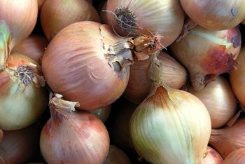 Onions are a nutritious way to add flavor to your food.