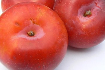 A fresh plum contains 30 calories.