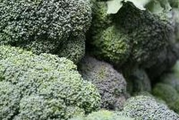 Vegetable Contains List of cruciferous vegetables healthy eating sf gate broccoli is a cruciferous vegetable that contains cancer fighting compounds workwithnaturefo