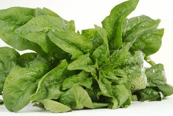 Spinach and other leafy greens are wholesome sources of calcium.