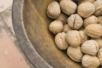 Walnuts are the seeds of walnut trees.