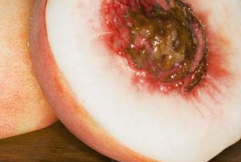 The pit found inside a peach is the seed.