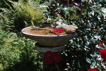 Building a birdbath fountain requires a little knowledge about birds.