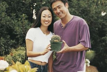 Low-moisture plants like cactus are ideal for container gardening.