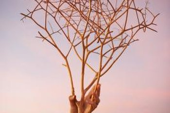 Bare branches may indicate death or dormancy.