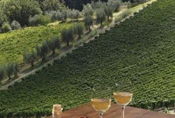 Italian Landscapes Serve As Inspiration For A Vineyard Themed Kitchen