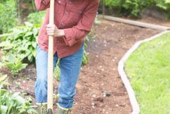How to Prepare Soil for a Vegetable Garden Without a Rototiller
