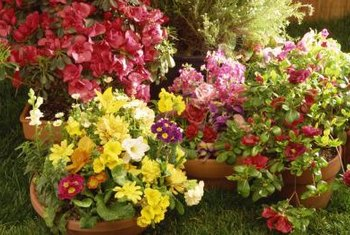 How To Arrange Flower Pots. Group Complementary Colors Together To Brighten  A Patio Or Porch.