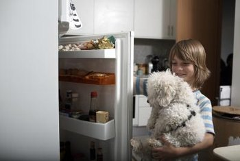 Pet hair and dust can wreak havoc on your refrigerator's condenser.
