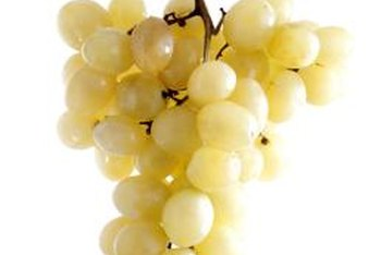 The Himrod is the result of a cross between Thompson Seedless and Ontario grapes.