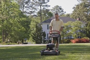 A lawn mower with a sharpened blade makes the task easier.