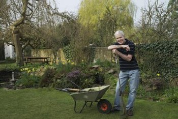 Use a wheelbarrow to transport soil and level larger areas.