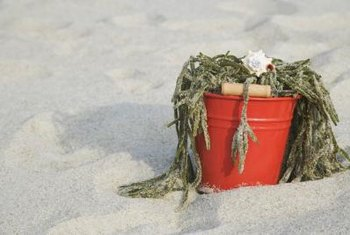 Collect seaweed that has drifted ashore.