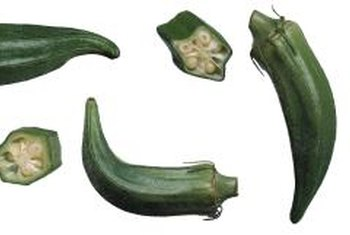 Okra pods are harvest-ready when they're 2 to 4 inches long.