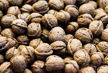 Walnut shells contain juglone, just like the rest of the tree.
