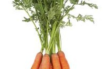Some carrot varieties are suited to container growing indoors.