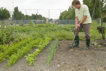 Garden soil benefits from regular applications of fertilizer to renew nutrients plants need.