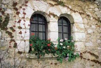 Create an Old-World feel with flower boxes on windows with security bars.