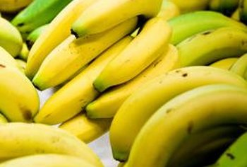 "Bananas found at grocery stores are typically ""Cavendish"" bananas."