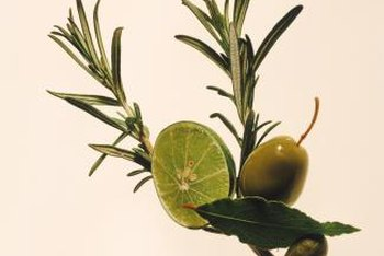 Rosemary tea can be made from fresh or dried leaves.