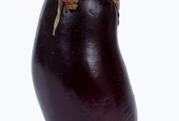 Eggplants produce best during warm weather and in moist soil.