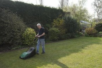 Returning cuttings to your lawn reduces the amount of fertilizer it needs.