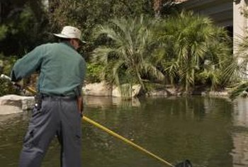 A pool skimmer helps prevent debris from settling in a pond.