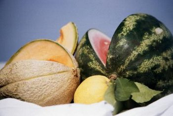 All varieties of melon, including watermelon, belong to the Cucurbitaceae plant family.