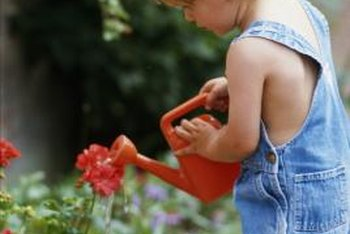 You'll need to water the flowers in your raised planters regularly.