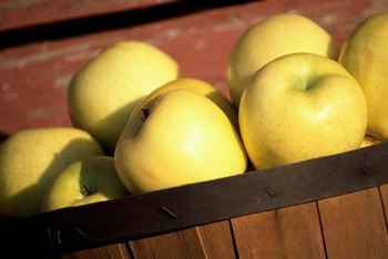 """Dorsett Golden"" apples are yellow or yellowish-green and sometimes have a pink blush."