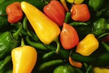 Chili peppers come in a variety of shades from green to yellow to red.