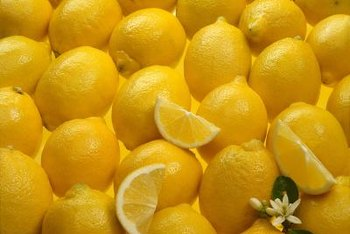 Meyer lemon trees may produce fruits, appreciated for their sweet flavor, almost year-round if grown indoors.