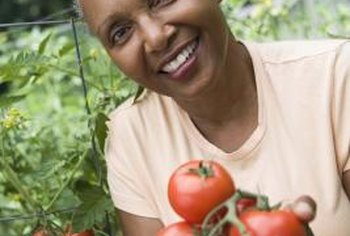 Tomatoes are rich in vitamins A, C and K, and also contain lycopene.