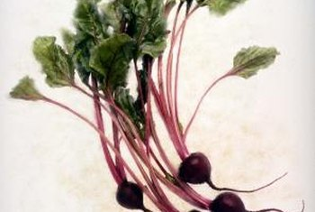 Beet tops are often compared favorably to tender spinach leaves.