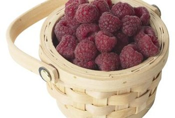 Harvest your first blackcap raspberries about a year after planting.