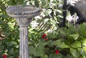 A simple stone birdbath is an ideal water feature for a cottage garden.