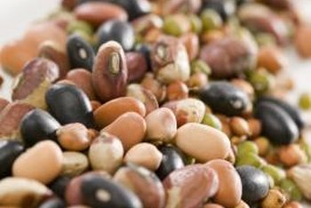 Mature legumes are excellent sources of protein and fiber.
