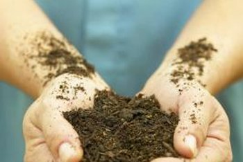Use a potting soil mix that does not have fertilizer mixed in.