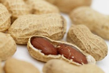 Peanuts are used for different purposes, based on their size and quality.