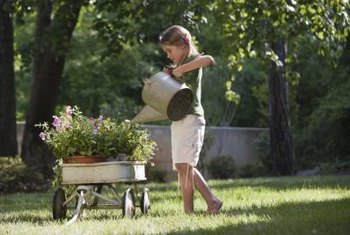 Watering can be a fun garden chore.