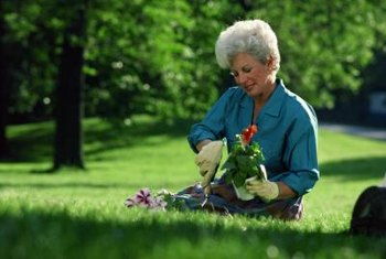 Gardening tools for arthritis patients and the elderly for Gardening tools for seniors