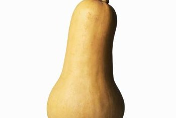 Store butternut squash in a cool, dry, dark location.