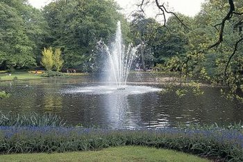 A fountain in the middle of a pond creates focus to stimulate many senses.