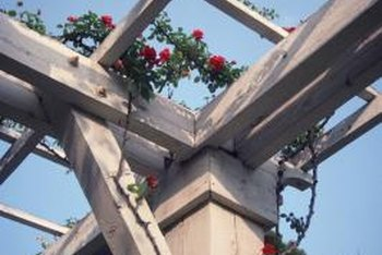 A wooden trellis adds beauty and function to your garden.