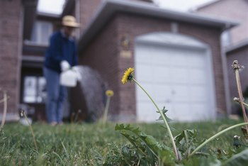 The wrong herbicide can leave brown spots in your lawn.